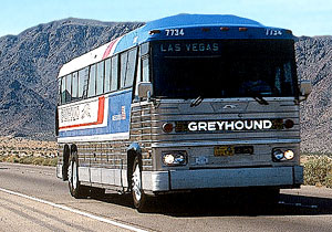 Live from a Greyhound Bus | No Car Go